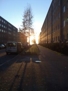 Sensommerkveld i Oslo